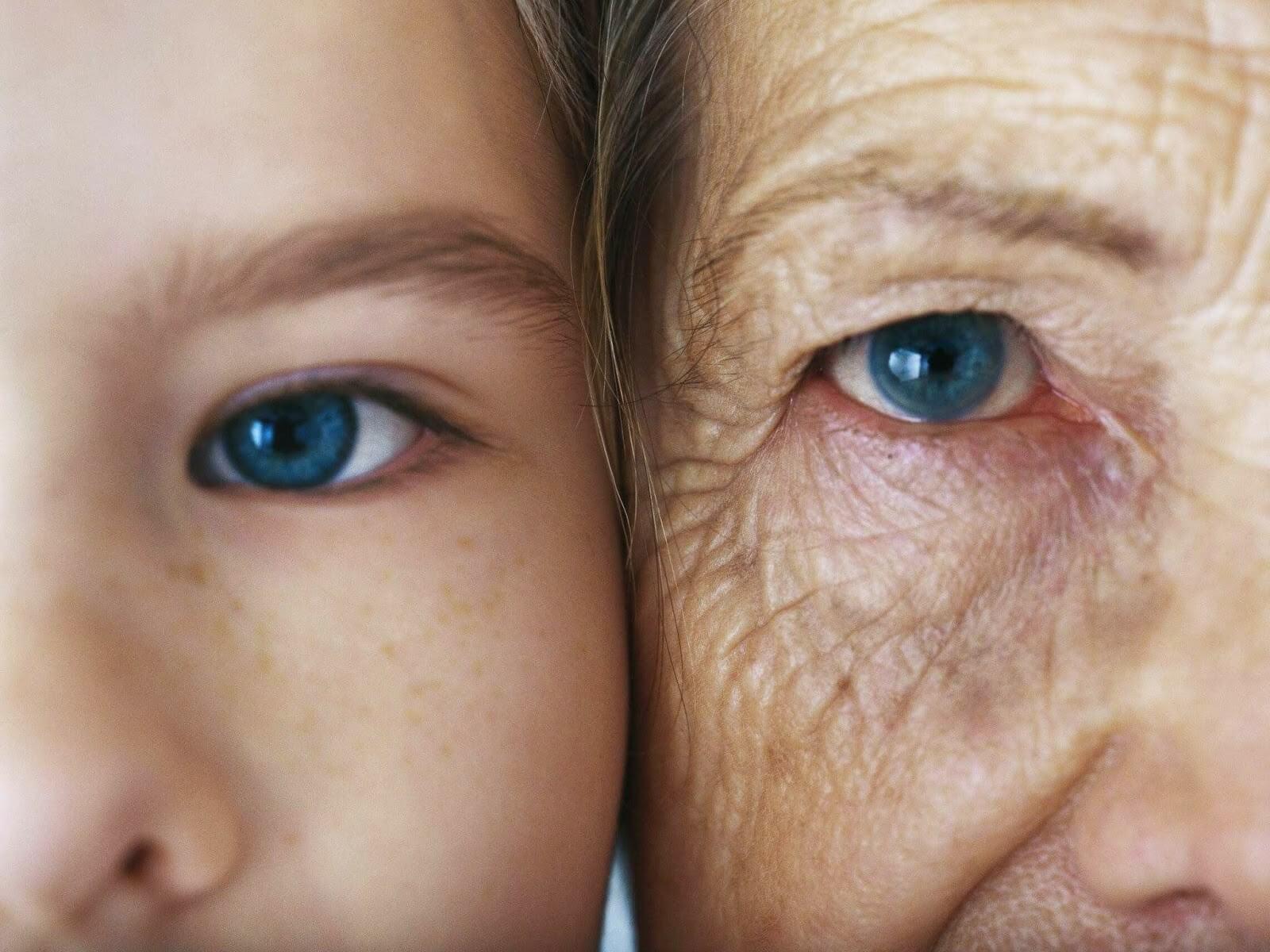 Como encontrar meus pais biológicos?